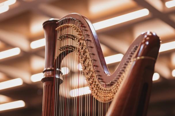 Harpa Credito Leandro Rodrigues, divulgação OSPA